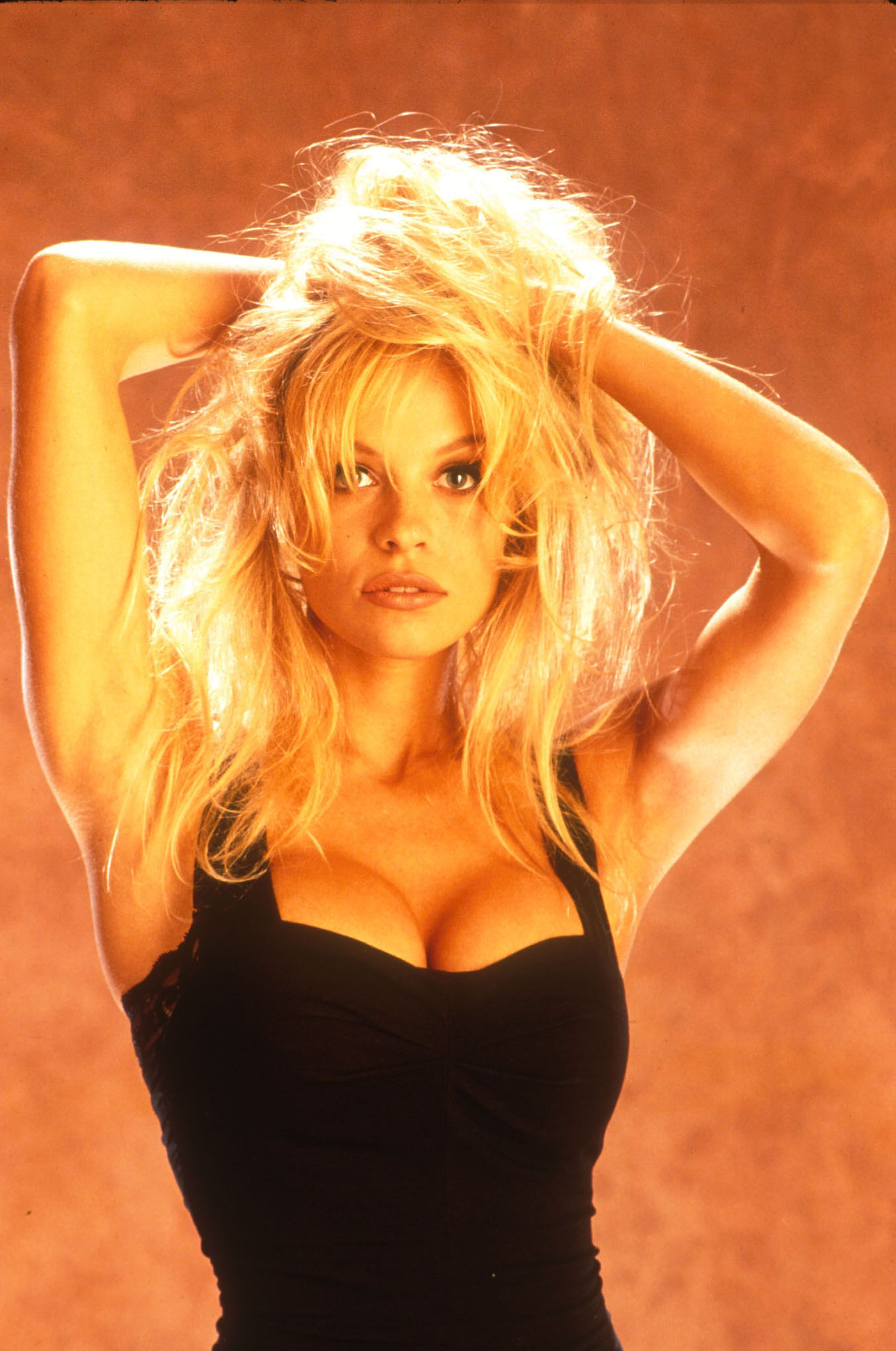 Sideboobs Pamela Anderson nudes (66 foto and video), Sexy, Hot, Twitter, bra 2018