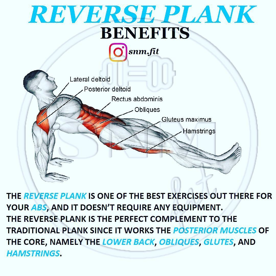 11+ Which muscles does a plank work inspirations