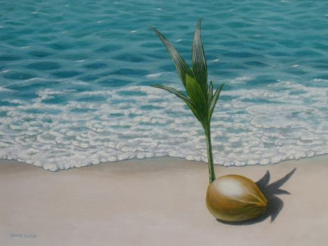 Coconut germinating on a tropical beach. Cocos nucifera. Oil painting by David Clode.