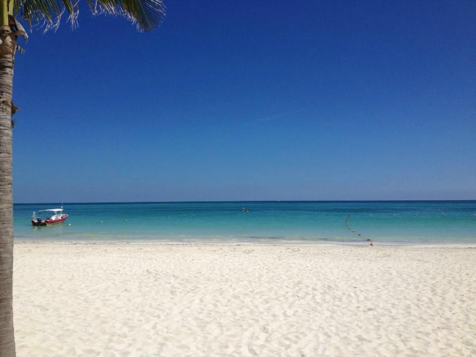 Secrets Maroma Beach Riviera Cancun Playa Mexico Resort All Inclusive Reviews Tripadvisor