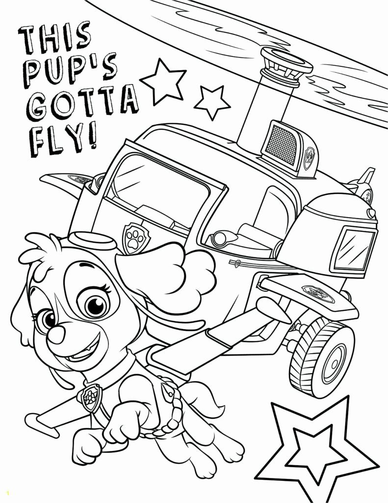 Pin By Astrid Reichert On Coloring Paw Patrol Coloring Pages Birthday Coloring Pages Paw Patrol Coloring