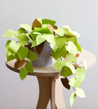 Click to enlarge image paper-plant-diy-big.jpg