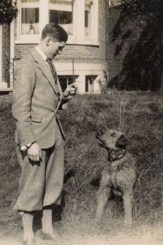 C 1920 S With Images Dog Photos Vintage Dog Airedale Terrier