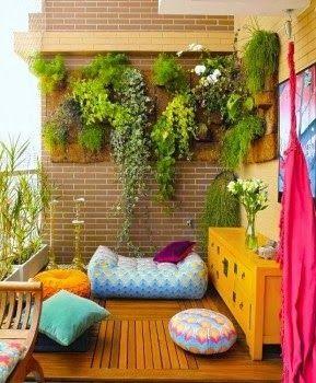 Um jardim para cuidar: Fevereiro 2014