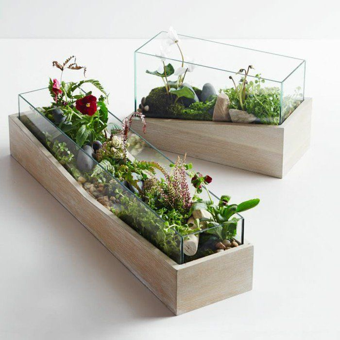 terrarium pour plantes tuto pour le faire et plus de 70 super mod les flower pinterest. Black Bedroom Furniture Sets. Home Design Ideas
