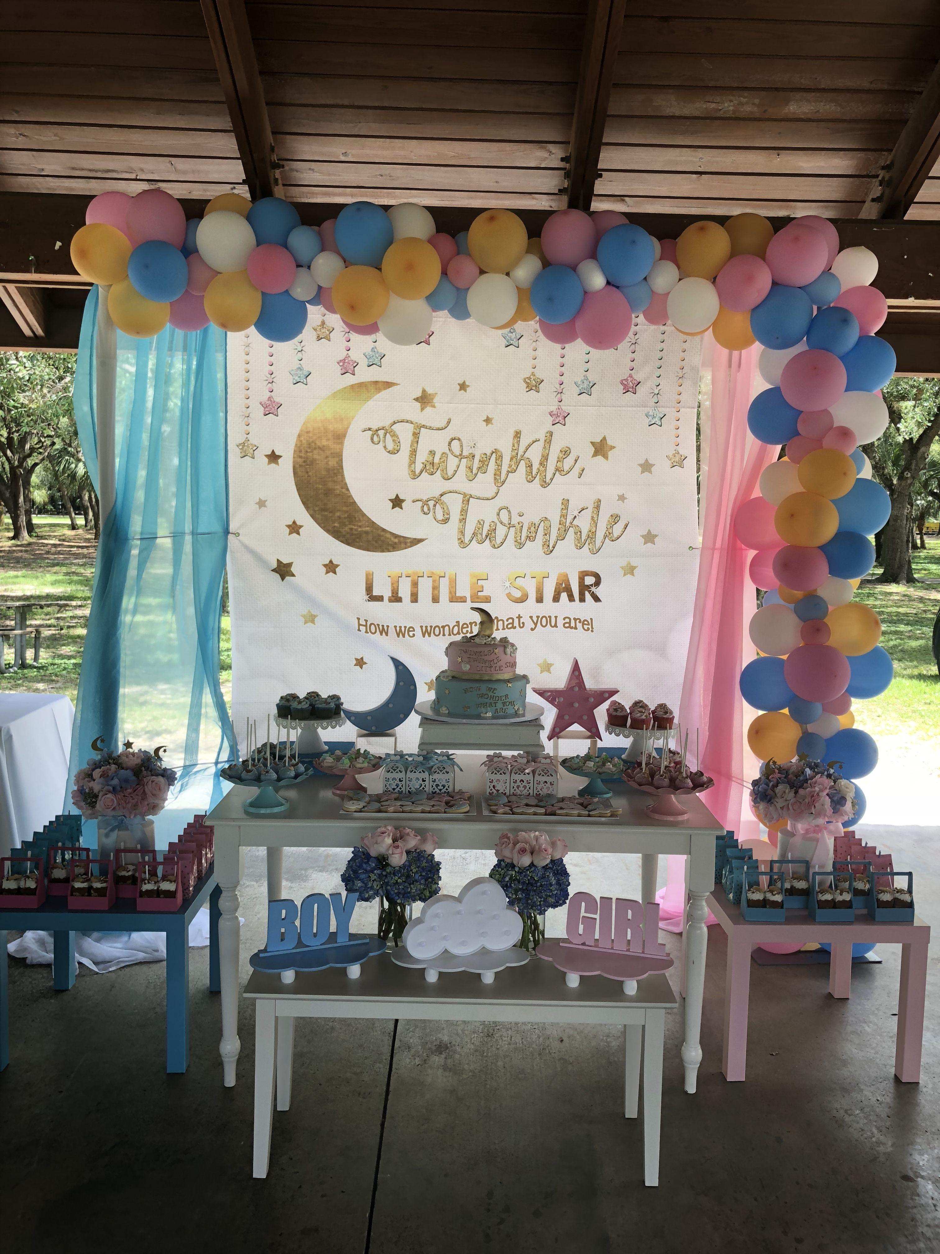 Twinkle Twinkle Little Star Gender Reveal Party Decorations Gender Reveal Party Games Gender Reveal Party