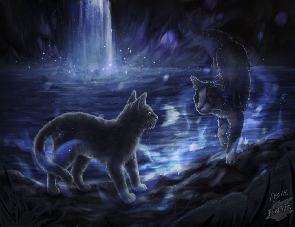 The Night Of The Half Moon By Frost Mint Deviantart Com On