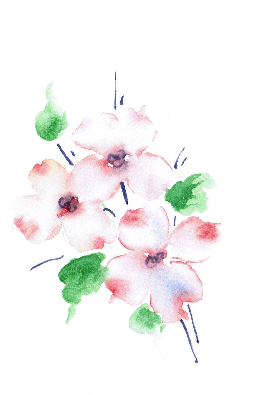 Dogwood Flower Clip Art Coloring Gardening Flower And Vegetables