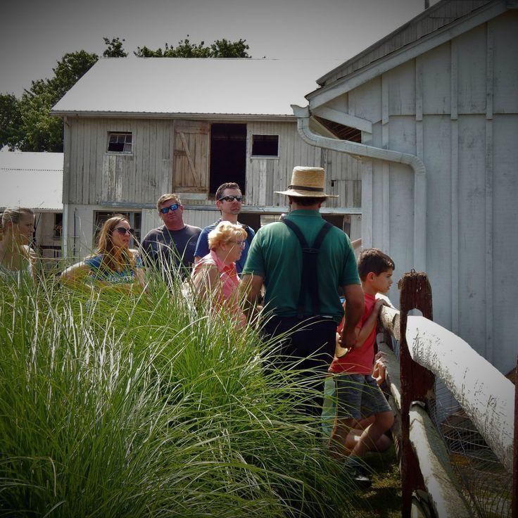 The Best Local Farm Tour in Every State Fair oaks farm