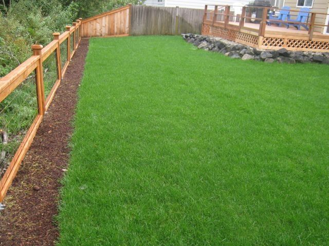 Short Fences For Yards This Is Cool Fence Doesn T Block Our View Of The Back And Still