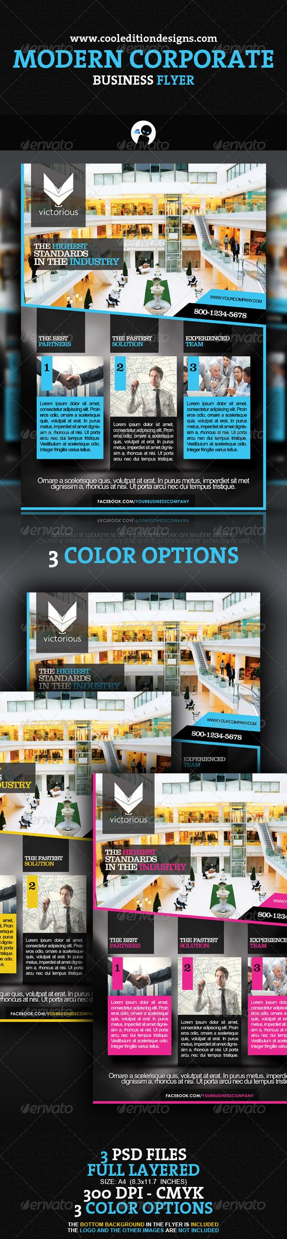 modern corporate business flyer the flyer fonts and microsoft modern corporate business flyer 6