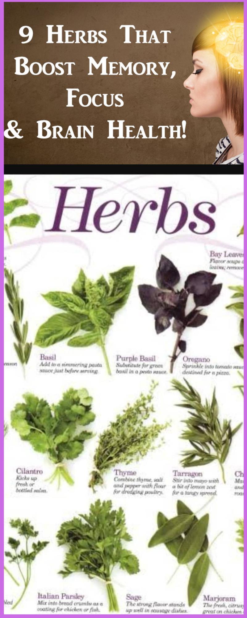 Herbs for brain health