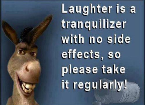 Laughter is a Tranquilizer Life Quotes / Share Life Quotes ...