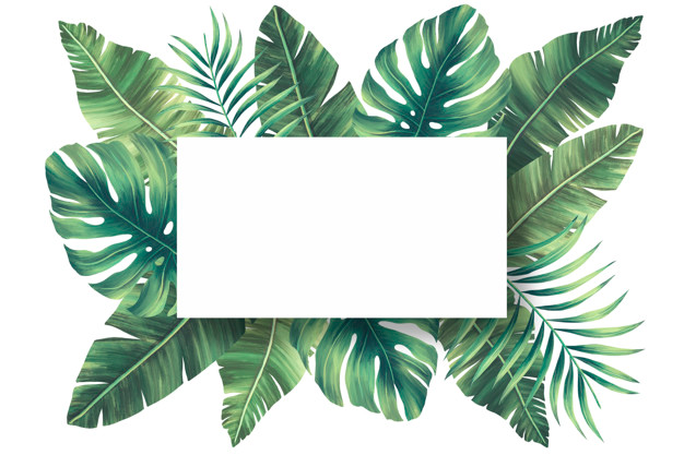 Download Lovely Natural Frame With Tropical Leaves For Free Tropical Leaves Tropical Frames Tropical Background