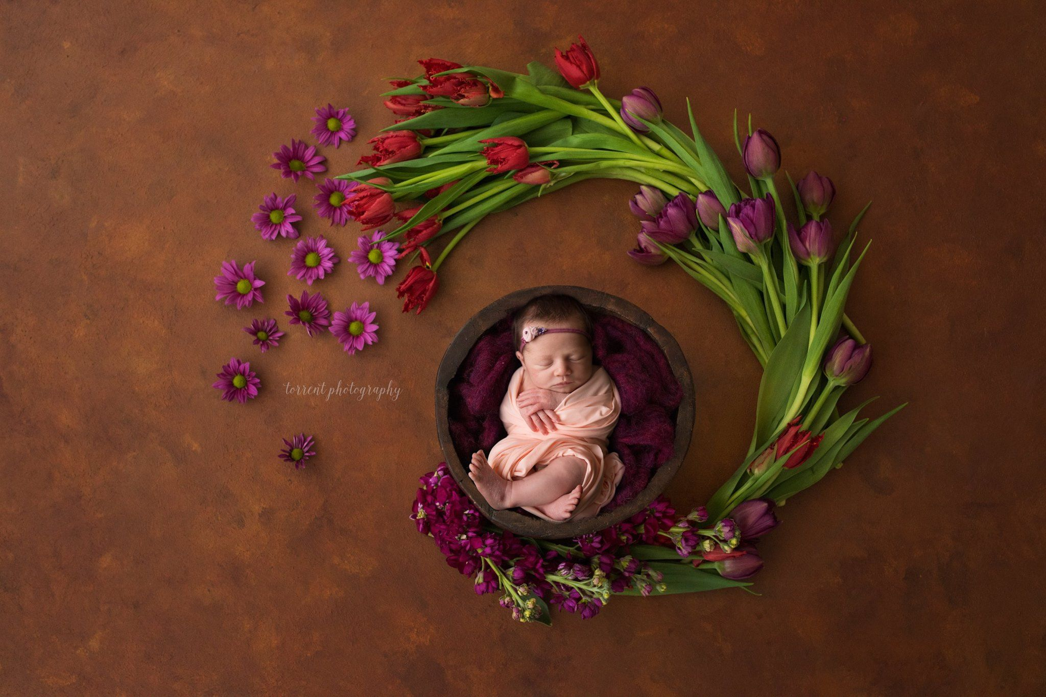 2 luisa dunn digital backdrops and templates for newborn photographers