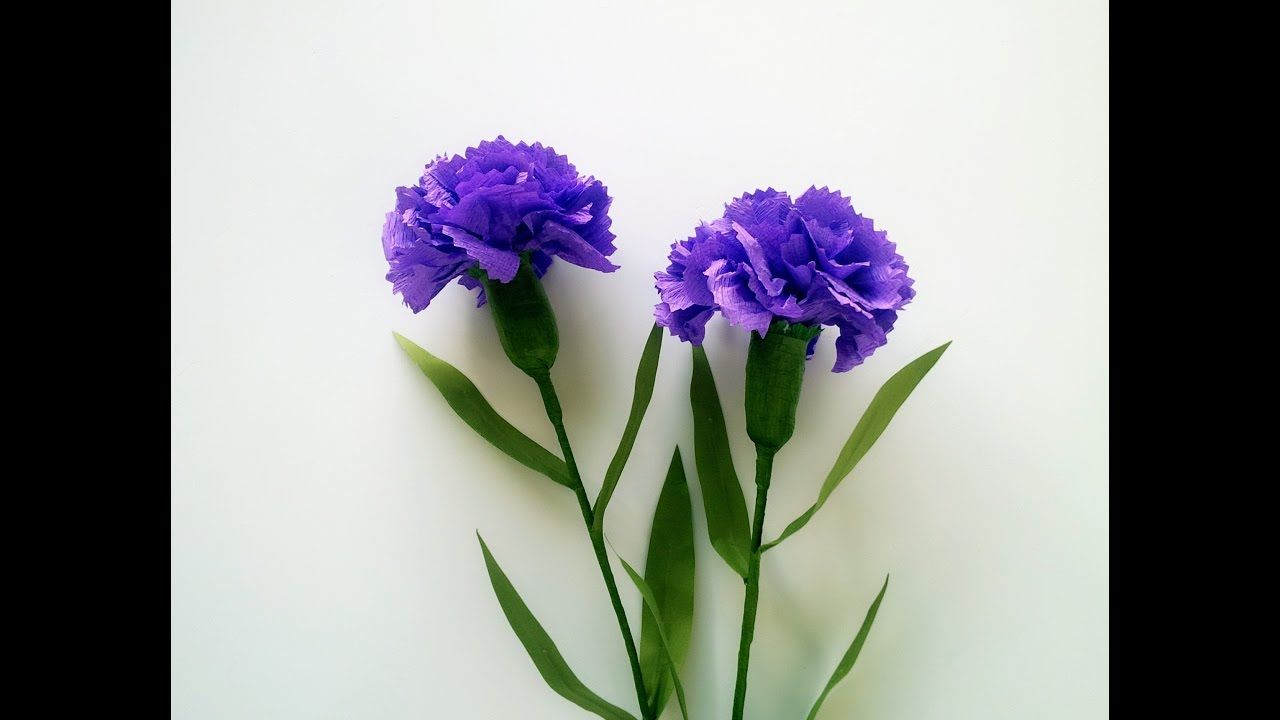 Carnations Are Very Rich With Symbolism And Mythology Just Like Roses Each Color Of Carnation Has A Diff Paper Flowers Craft Paper Flowers Crepe Paper Crafts