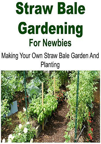 Straw bale gardening for newbies making your own straw bale garden and planting straw bale for Best plants for straw bale gardening