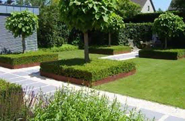 Tuinaanleg google zoeken tuin pinterest gardens for Tuinaanleg modern