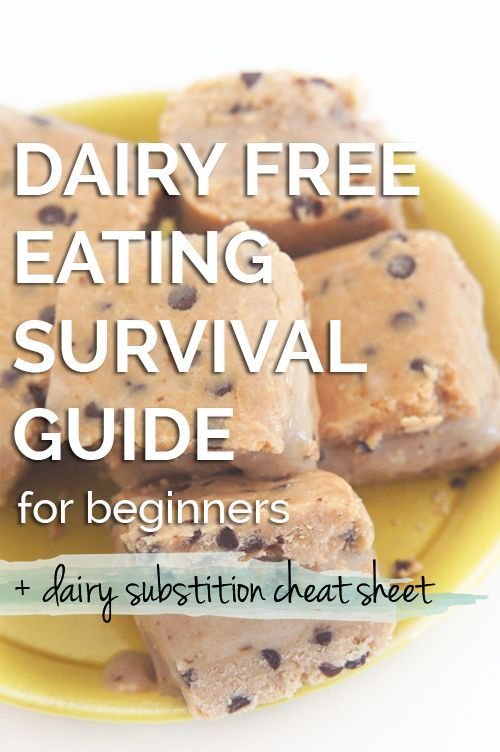 Dairy Free Survival Guide for Beginners - Diary of an ExSloth
