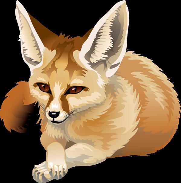 Fennec Fox By Silvercrossfox Deviantart Com On Deviantart Fox Nursery Art Animal Drawings Pretty Animals