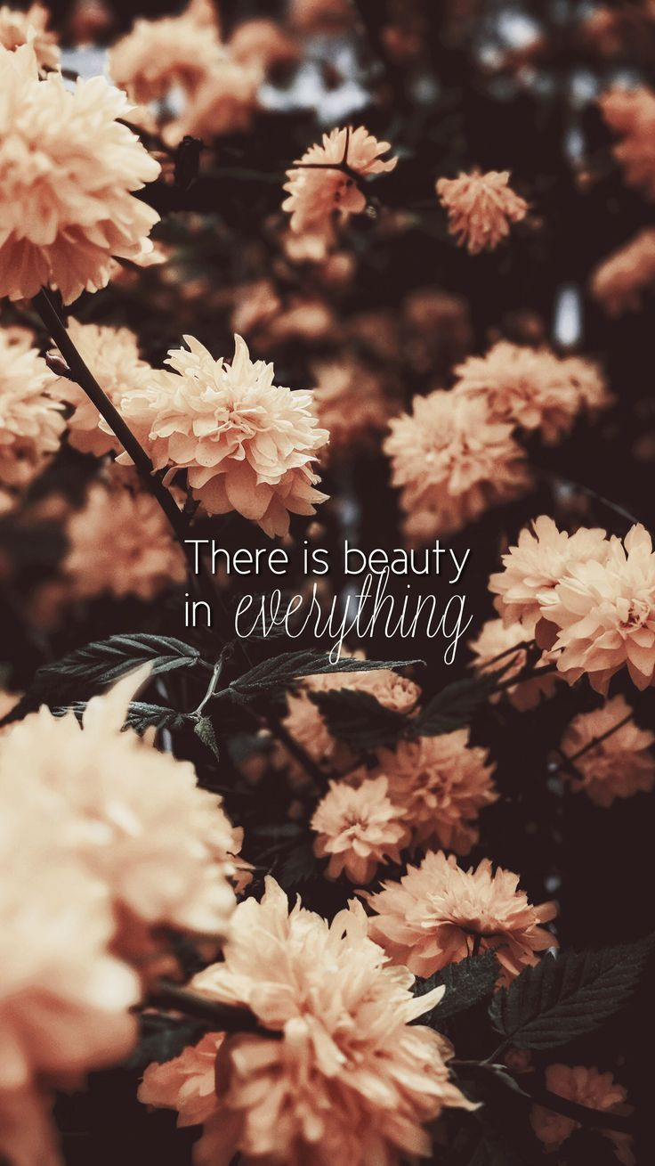 iPhone Wallpaper There is beauty in everything. Quotes #wallpaper