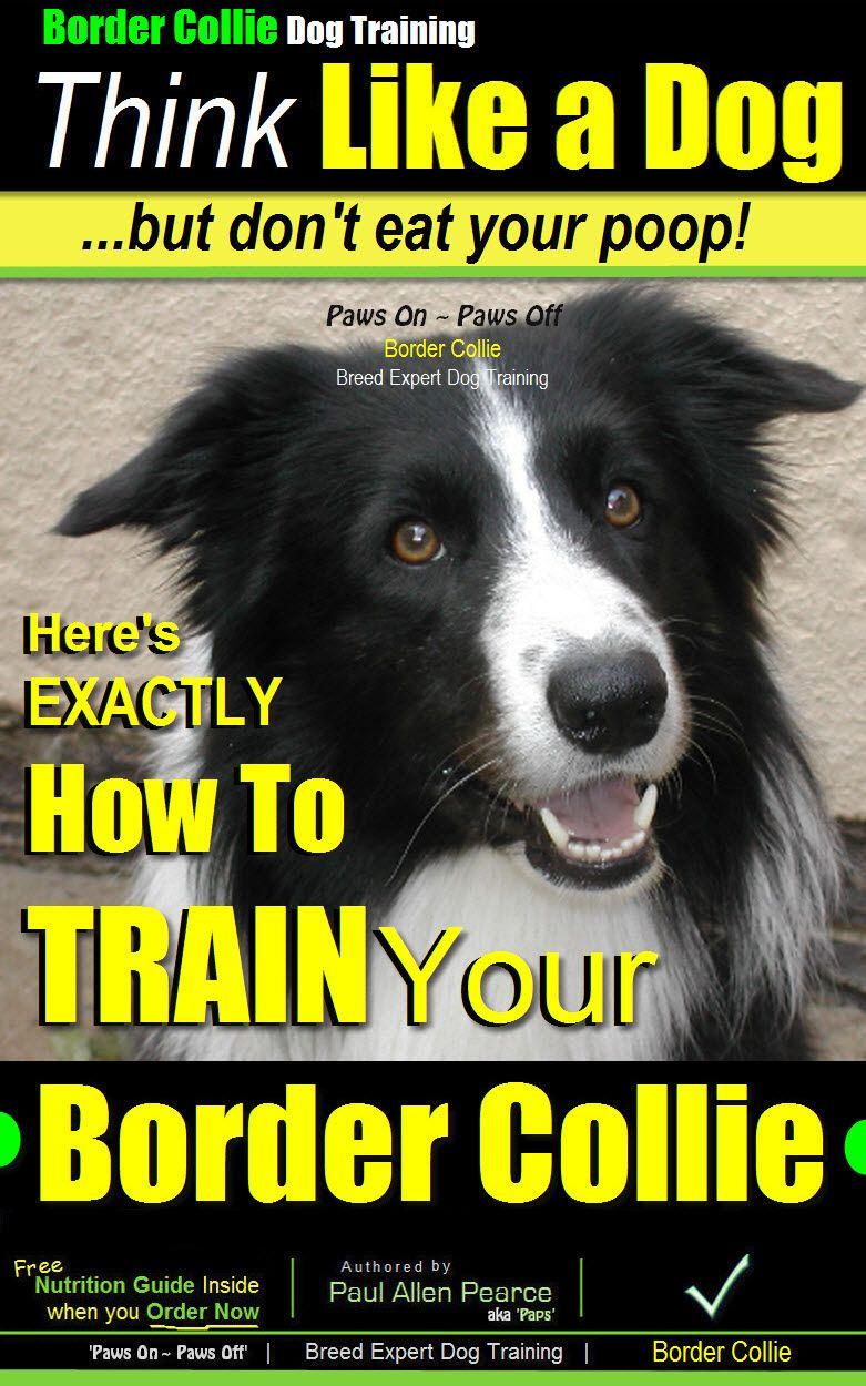 Covering Eyes One Cue Dog Tricks Border Collie Australian