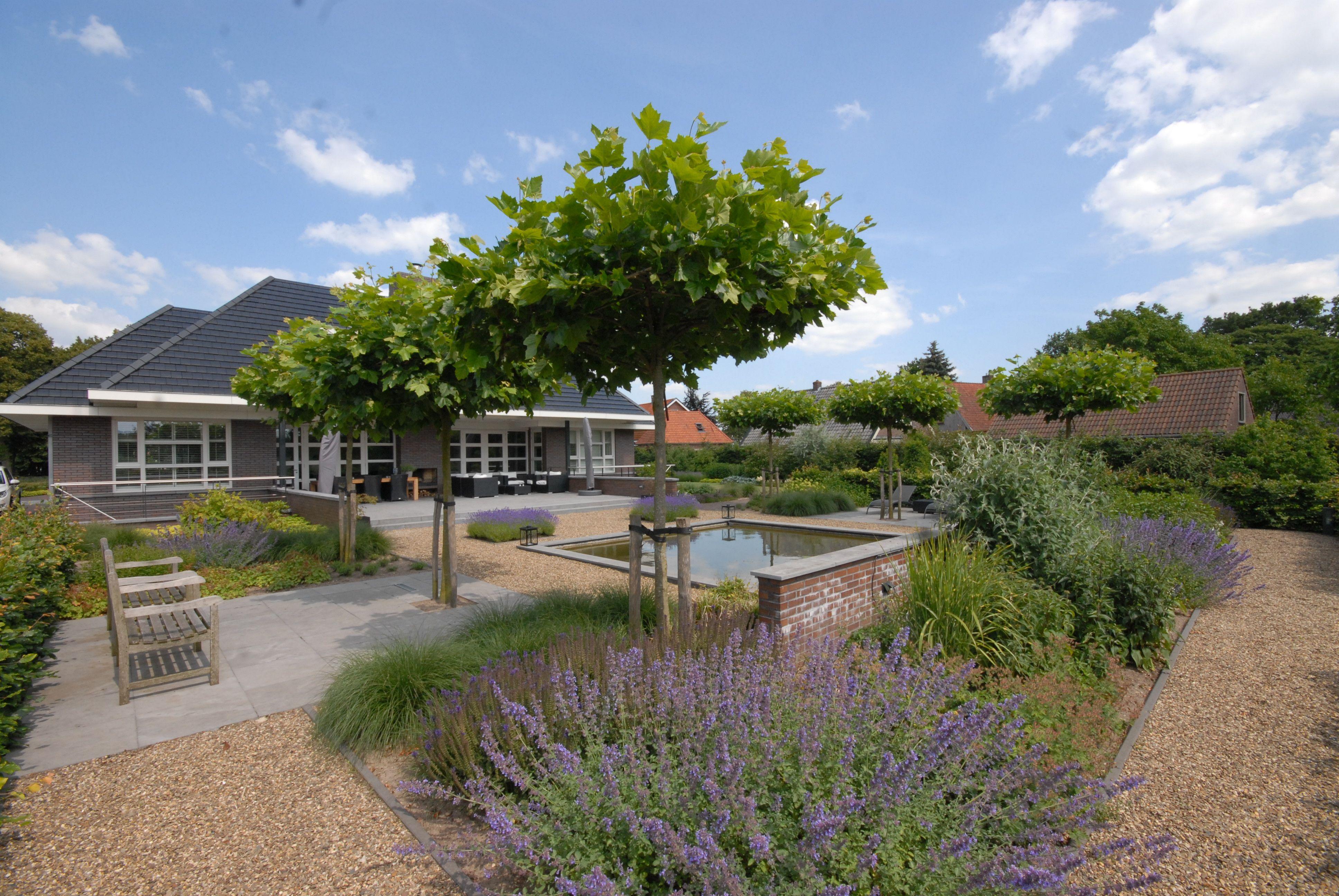Grote Moderne Tuin : Grote tuin moderne tuin strakke lijnen zichtlijnen dakplatanen