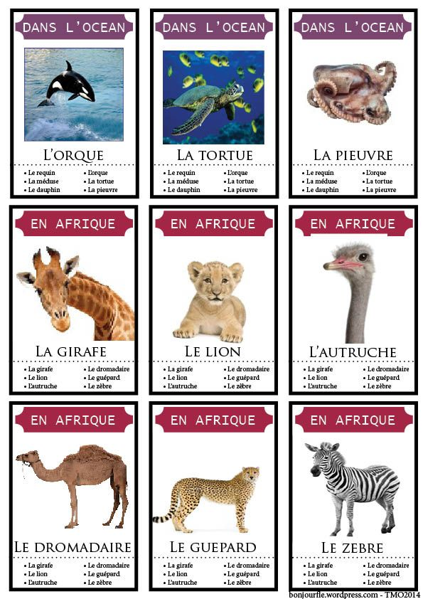 Extrêmement Jeu de 7 familles / ANIMAUX | Learning french, French resources  HX42