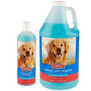 Grreat Choice Tearless Puppy Shampoo Petsmart Puppy Shampoo Dog Shampoo Puppies