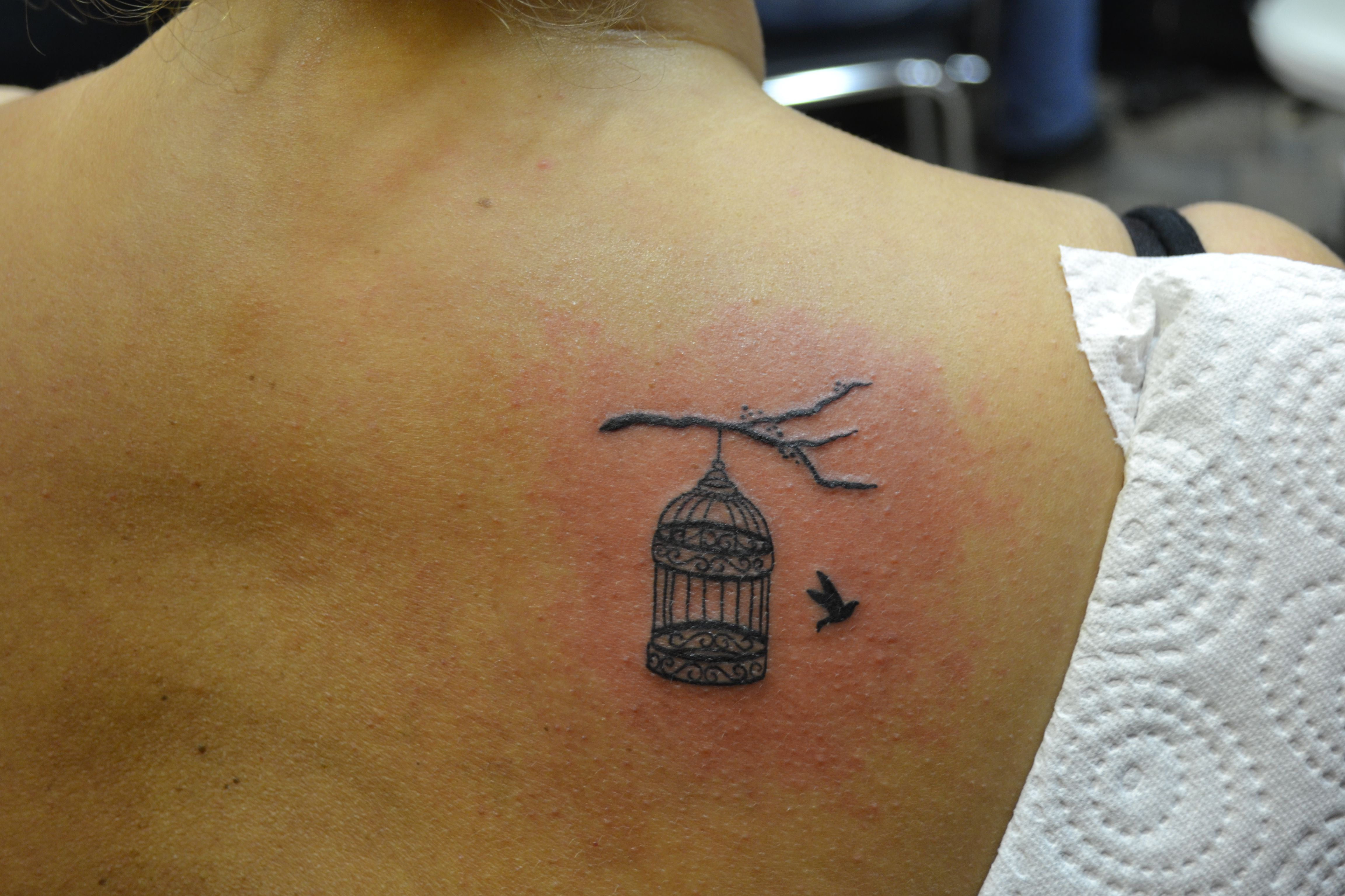 Westend Tattoo Westendtattooandpiercing Tattoo Small Tattoo Bird Tattoo Small Black Bird Tattoo Shoulder Ta Shoulder Tattoo Birdcage Tattoo Cage Tattoos