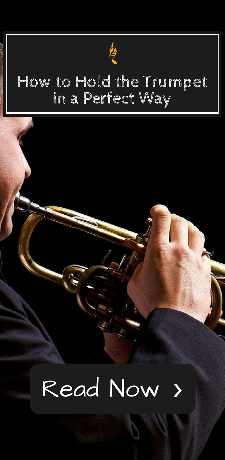 How To Hold The Trumpet Correct Posture For Both Hands Trumpet Hold On Posture Correction