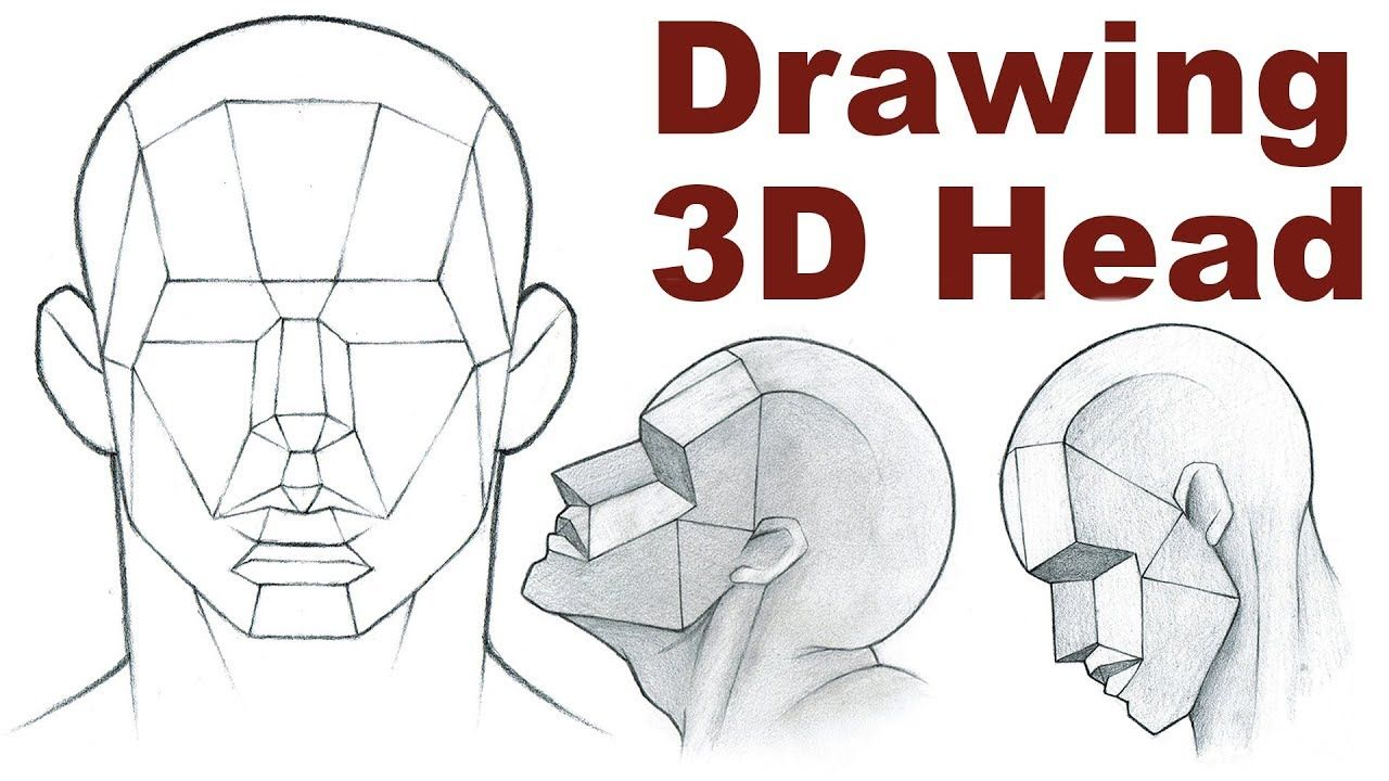 Portrait Drawing Basics 3 3 How To Draw A 3d Head Portrait