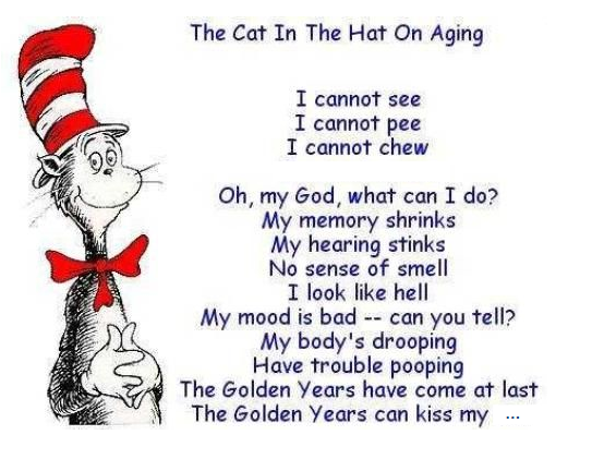 ba1162dd cat in the hat on aging poem | just love the person who sent me this…as I  am getting one year .