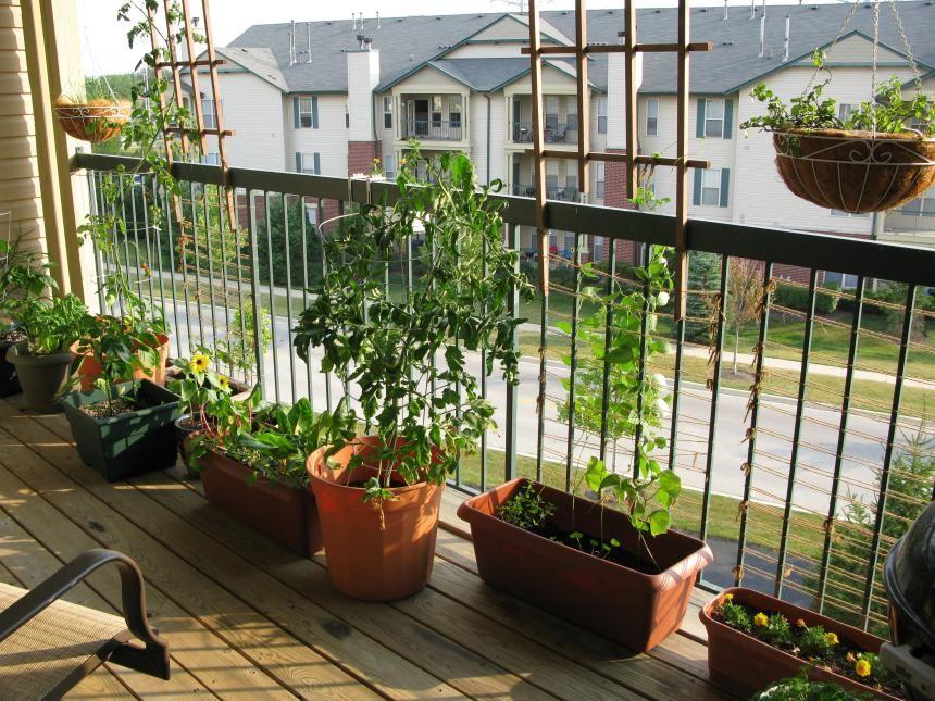 64 Apartment Gardens Balcony Very Small Ideas Apartmentideas Gardensapartment