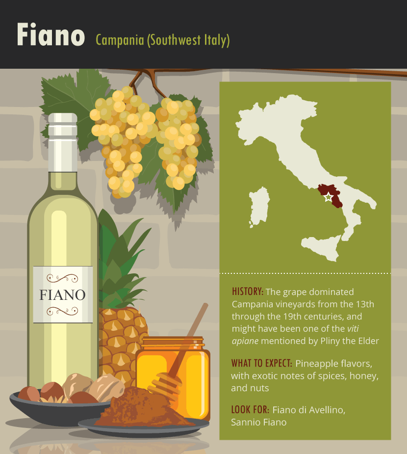 Fiano White Wine Variety Fiano Grapes See  for Aussie producers