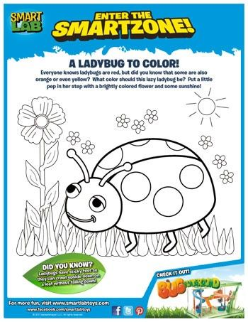A Ladybug to Color Printable Freebie!