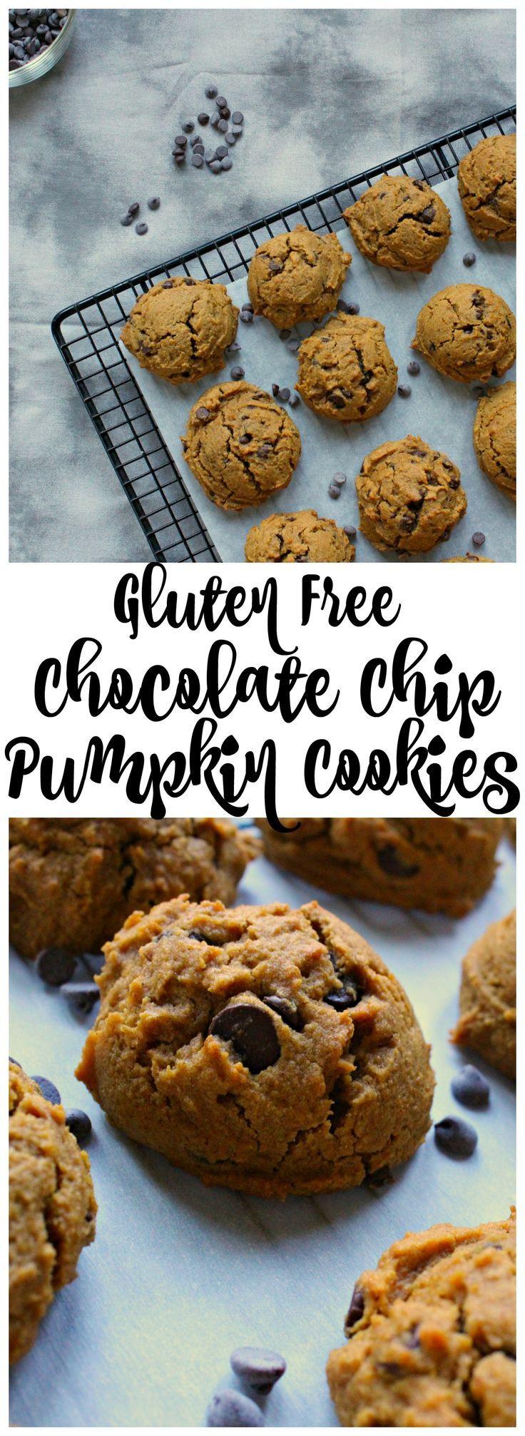 Gluten Free Chocolate Chip Pumpkin Cookies -   13 healthy recipes Gluten Free chocolate chip cookies ideas