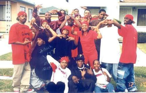 Famous Los Angeles Gang Founded In 1972 As A Club Also Known As The Biggest Rivals Of Cribs They Are Known With Their Red Cl Gang Culture Gang Gang Crime