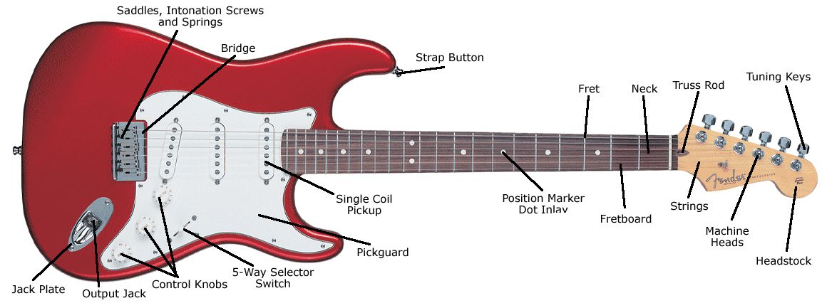 Anatomy of a Fender Strat | Cool instruments!! | Pinterest | Anatomy ...