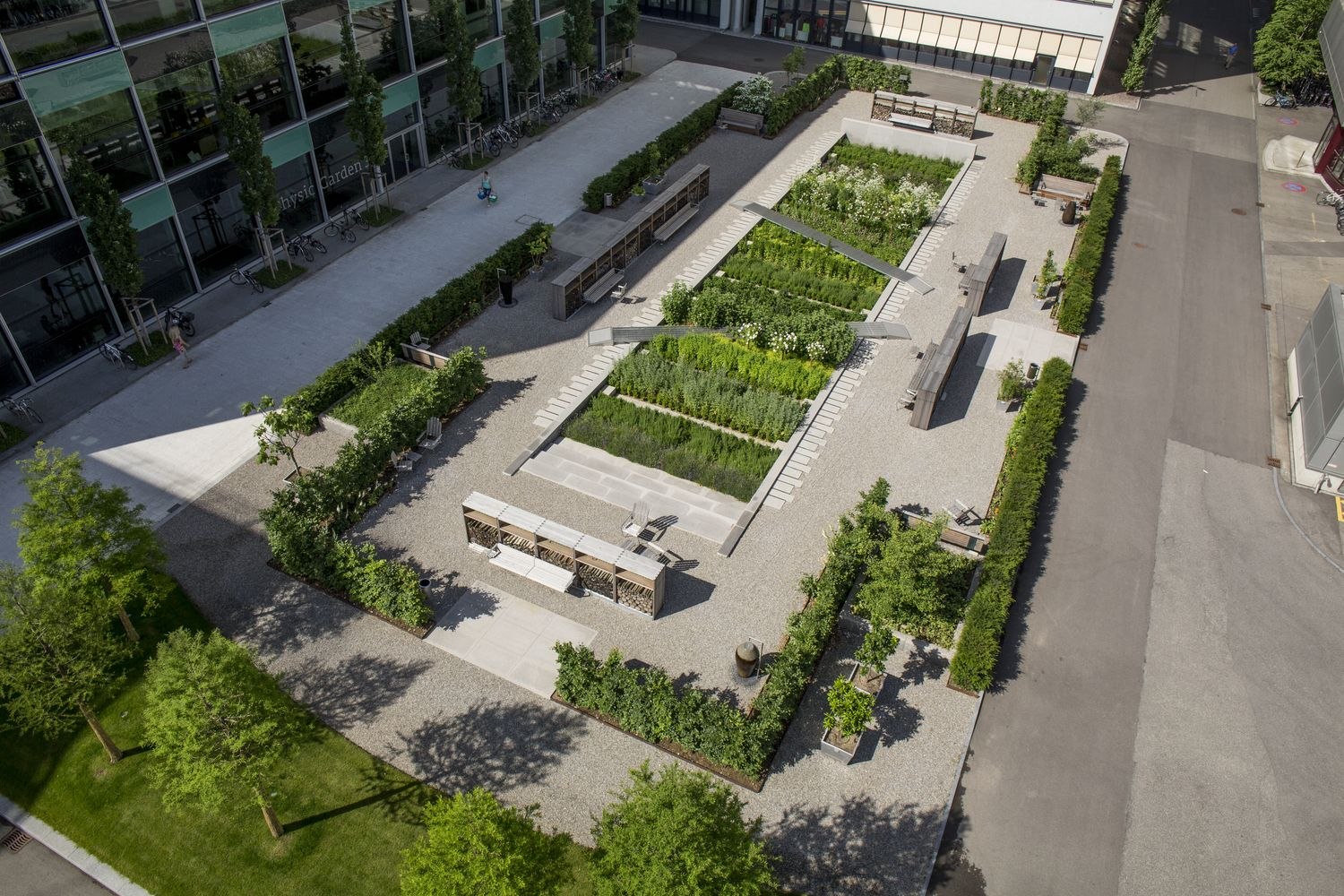 Physic garden wikipedia - Gallery Of Novartis Physic Garden Thorbj Rn Andersson Sweco Architects 6