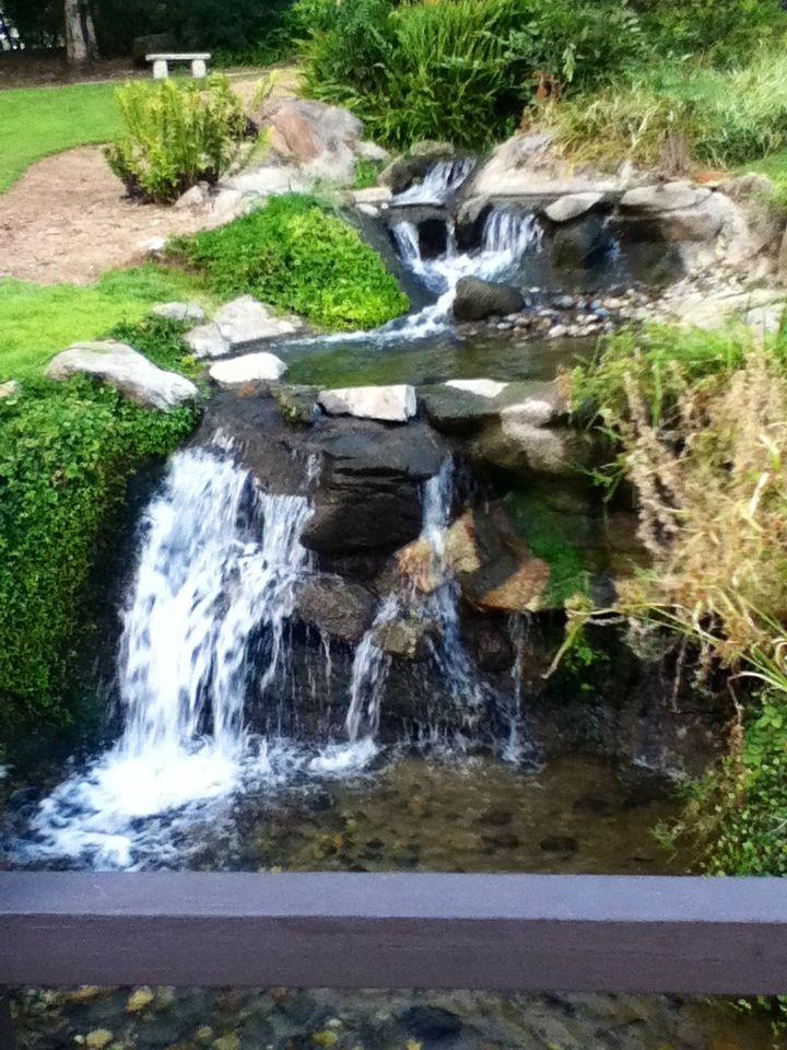 Japanese Garden In Woodward Park Fresno CA