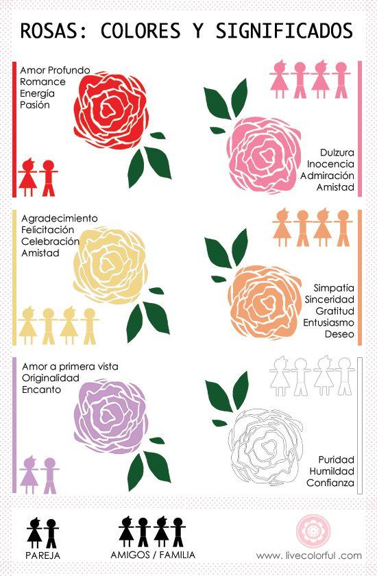 Día De San Valentín El Significado Del Color De Las Rosas