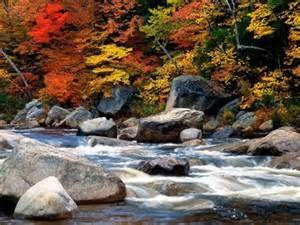automne -