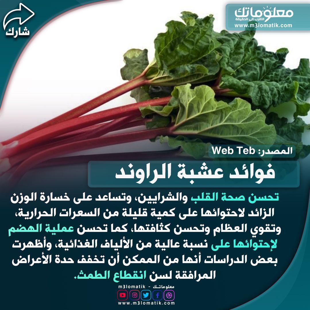 عشبة الراوند Herbs Food