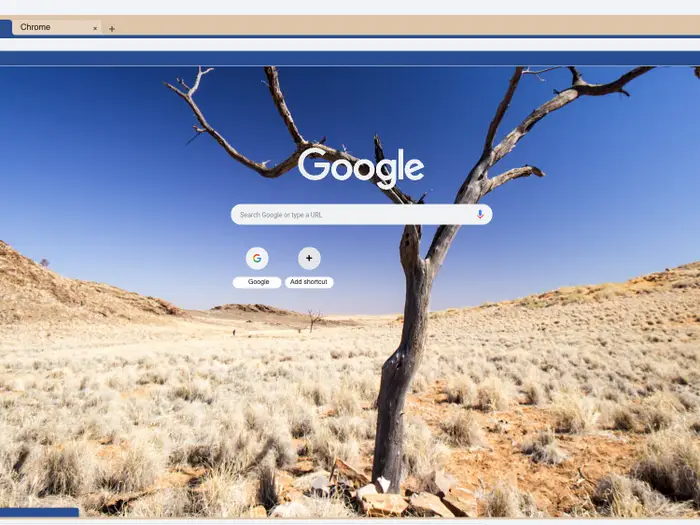 How To Change Your Google Chrome Theme Or Create Your Own Custom Theme For A Personalized Web Browsing Experience Google Themes Custom Theme Google Chrome