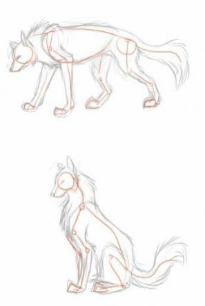 Trendy Drawing Wolf Poses Ideas Animal Sketches Animal Drawings Furry Drawing