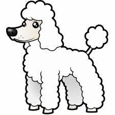 Resultado De Imagen Para Perritos Poodle Animados Para Dibujar