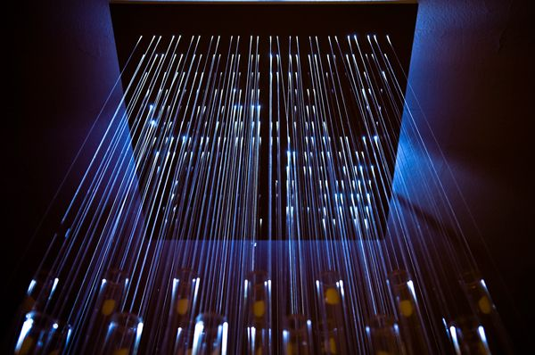 installation art fiber optic