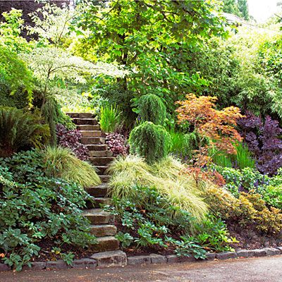 11 great shade gardens garden ideas sunset and gardens for Shady backyard landscaping ideas