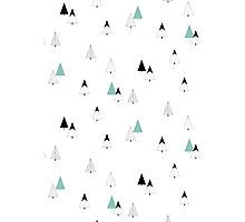 Pine Trees Fotodruck